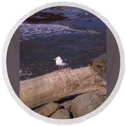King Of The Seagulls Round Beach Towel