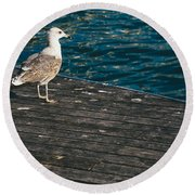 Seagull On The Pier Round Beach Towel