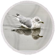 Seagull Reflections Round Beach Towel