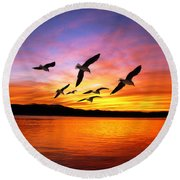 Seagull Sunset   Round Beach Towel