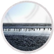 Seagulls On A Sandbar Round Beach Towel