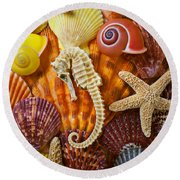 Seahorse And Assorted Sea Shells Round Beach Towel by Garry Gay