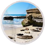Seals Siesta On La Jolla Beach Round Beach Towel