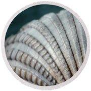 Seashell Designs Round Beach Towel