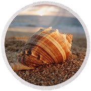 Seashell In The Sand Round Beach Towel
