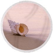 Seashell Round Beach Towel