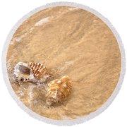 Seashell Turbulence Round Beach Towel