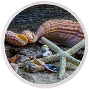 Seashells And Driftwood Round Beach Towel