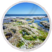 Seaweed And Salt Landscape. Round Beach Towel by Gary Gillette