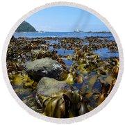 Seaweed Round Beach Towel