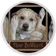 See Boweevil Round Beach Towel