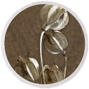 Seed Pods Macro Round Beach Towel