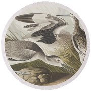 Semipalmated Snipe Or Willet Round Beach Towel
