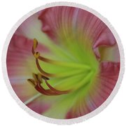 Sensual Pink Lilly Round Beach Towel