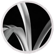 Sensuous Amaryllis Leaves Round Beach Towel