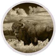 Sepia Toned Photograph Of An American Buffalo Round Beach Towel