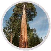 Sequoia Trees Round Beach Towel