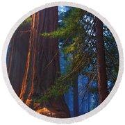 Sequoias On Blue Round Beach Towel