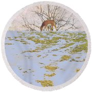 Serenity In The Spring Snow Round Beach Towel
