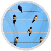 Seven Swallows Round Beach Towel