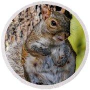 Sexy Squirrel Round Beach Towel