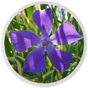 Shaded Greater Periwinkle Round Beach Towel