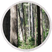 Shades Of Trees Round Beach Towel