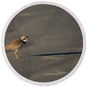 Shadow - Semipalmated Plover Round Beach Towel