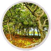 Shady Grove At Wai'anapanapa Round Beach Towel