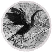 Shaking Off Water, Black And White Round Beach Towel