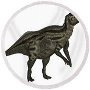 Shantungosaurus Dinosaur Round Beach Towel