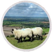 Sheep At Westbury Tor Round Beach Towel