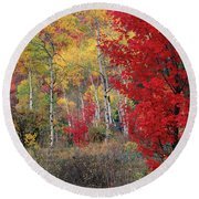 Sheep Canyon In Autumn Round Beach Towel