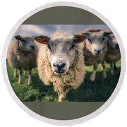 Sheep Round Beach Towel