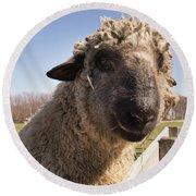 Sheep Face 2 Round Beach Towel