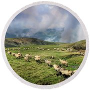 Sheep In Carphatian Mountains Round Beach Towel