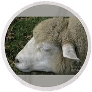 Sheep Sleep Round Beach Towel
