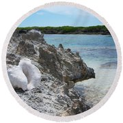 Shell On Dominican Shore Round Beach Towel