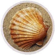 Shell On The Sand Round Beach Towel