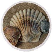 Shells 1 Round Beach Towel