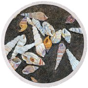 Shells From The Sea Of Galilee Round Beach Towel
