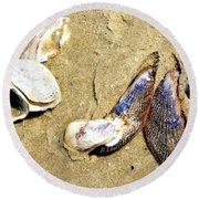 Shells On The Beach Of Jekyll Round Beach Towel