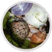 Shells Under Glass II Round Beach Towel