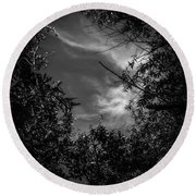 Shimmering Tree Branches Round Beach Towel