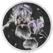 Shiny Irises Round Beach Towel