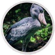 Shoebill Stork Side Portrait Round Beach Towel