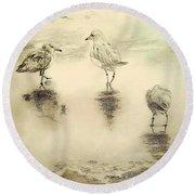 Shore Birds At Sunset Round Beach Towel