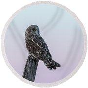 Short-eared Owl 2018-5 Round Beach Towel