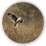 Short-eared Owl About To Strike Round Beach Towel