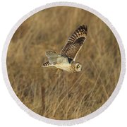 Short-eared Owl With Vole Round Beach Towel